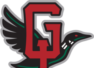Great Lakes Loons